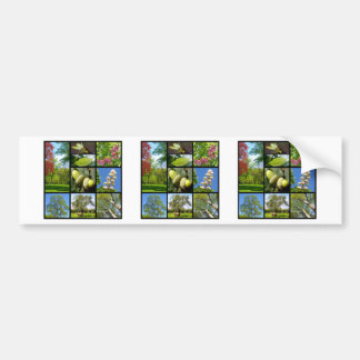 Trees mosaic bumper sticker