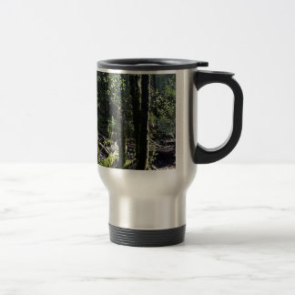 TREES MOUNT FIELD NATIONAL PARK TASMANIA AUSTRALIA TRAVEL MUG