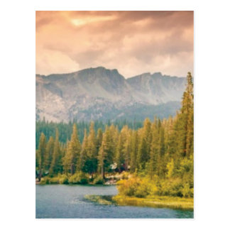 trees mountain and stream postcard