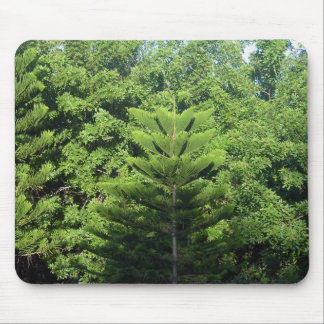 Trees Mouse Pads