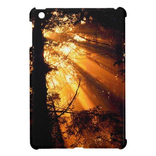 Trees Mystic Sunbeams Olympic iPad Mini Case
