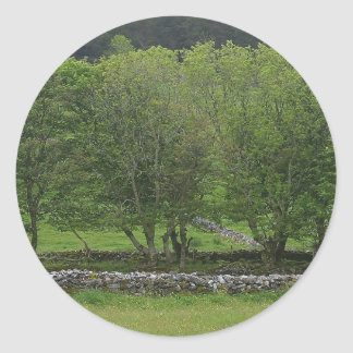 Trees Near Knocknara Round Stickers
