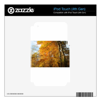 Trees of Fall iPod Touch 4G Decals
