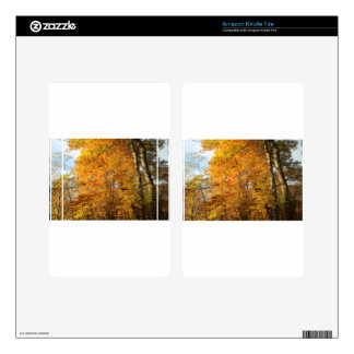 Trees of Fall Kindle Fire Skins