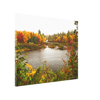 TREES OF GOLD ENCIRCLE TAHQUAMENON RIVER AND FALLS CANVAS PRINT