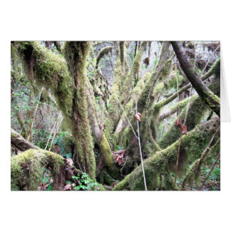 Trees of Moss Greeting Card