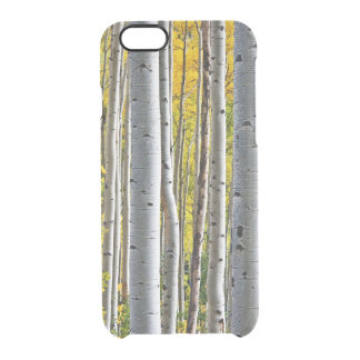 Trees Of Nature Clear iPhone 6/6S Case