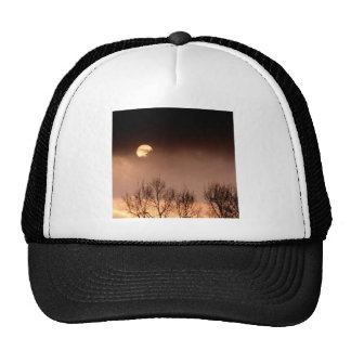 Trees Ominous Evening Trucker Hat