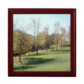 Trees on Slope ... Mahogany Gift Box