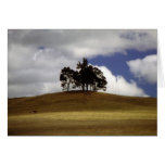 Trees On The Hill Greeting Cards