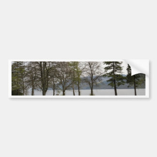 Trees on the shore of Loch Ness Car Bumper Sticker