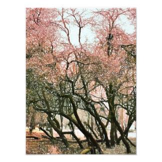 TREES PHOTO PRINT