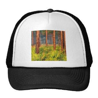 Trees Pines Escape Ranch Florida Trucker Hat