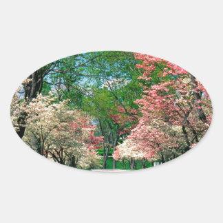Trees Pink White Dogwood Lexington Kentucky Oval Sticker