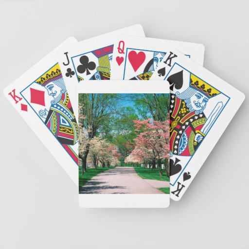 Trees Pink White Dogwood Lexington Kentucky Bicycle Card Deck