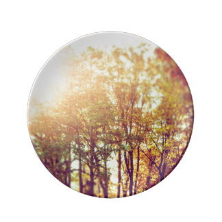 Trees Porcelain Plate