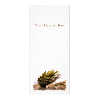 TREES RACK CARD