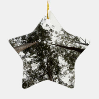 Trees rising high in the sky Double-Sided star ceramic christmas ornament