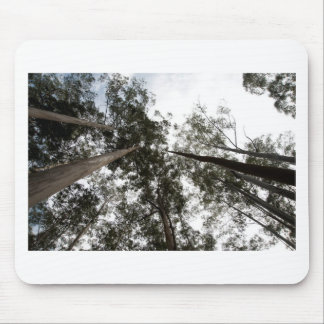 Trees rising high in the sky mousepad