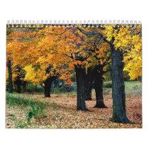Trees Scripture Calendar