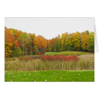 """TREES SHOW OFF FALL COLOR""/ MICHIGAN LOCALE CARD"