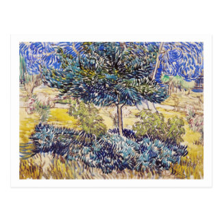 Trees Shrubs Asylum Garden Vincent Van Gogh Postcard