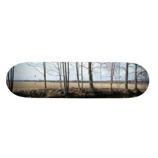 Trees Skateboard Decks