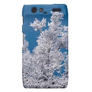 Trees Snow Branches Minnesota Droid RAZR Case