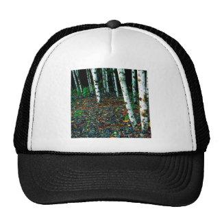 Trees Standing Room Only Birch Trucker Hat