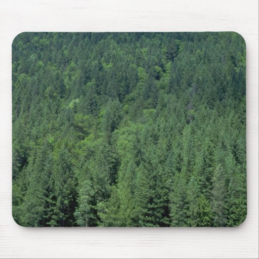 Trees texture mousepad
