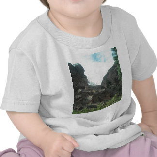 Trees T-shirts