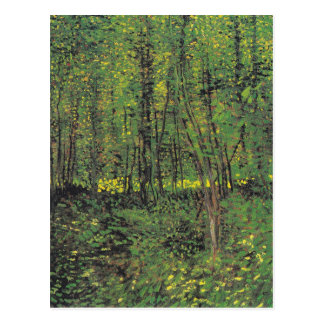Trees & Undergrowth by Van Gogh Postcard