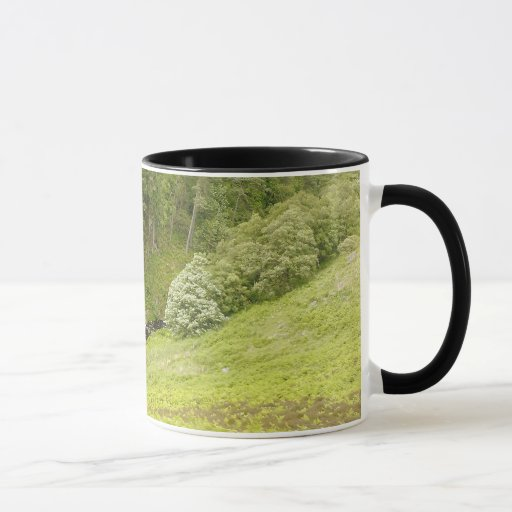 Trees, Valley and Stream Mug