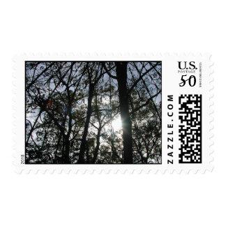 Trees with Gazebo & Sun - Postage