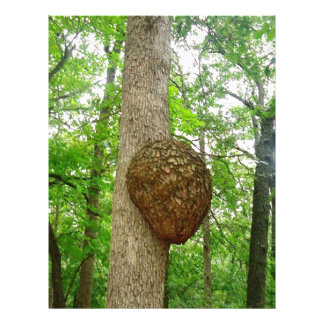 Trees with Large enclosed Bee Wasp Hive Letterhead