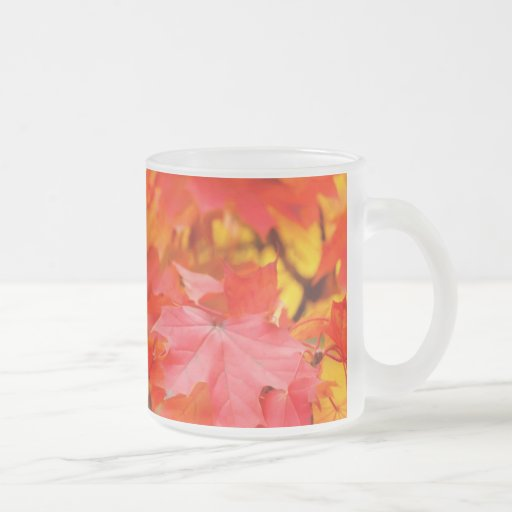 Trees with Orange and Yellow Leaves in the Fall Coffee Mug