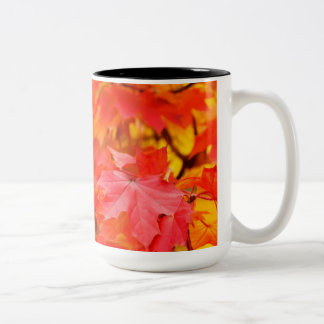Trees with Orange and Yellow Leaves in the Fall Two-Tone Coffee Mug