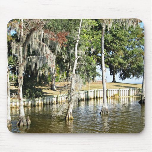 Trees with Spanish Moss, growing in water Mousepad