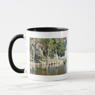 Trees with Spanish Moss, growing in water Mug