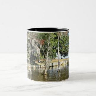 Trees with Spanish Moss, growing in water Two-Tone Coffee Mug