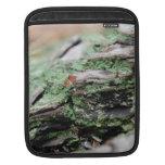 Treescape - madera y musgo manga de iPad