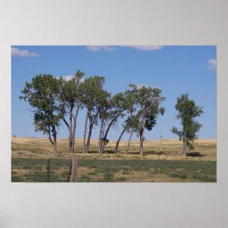Treescape Póster