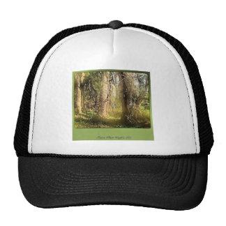 Treesome Trucker Hat
