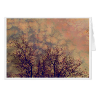 Treetops Amber card