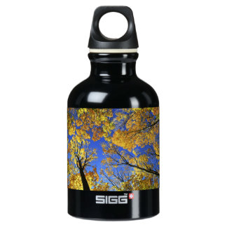 Treetops in autumn forest aluminum water bottle