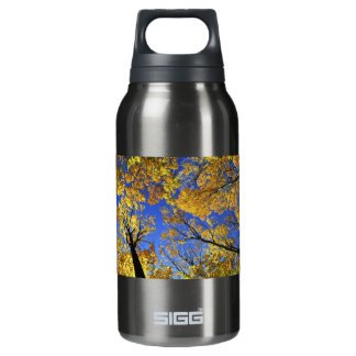 Treetops in autumn forest insulated water bottle