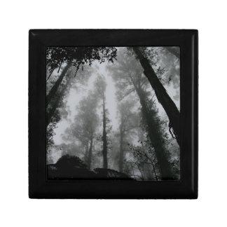 Treetops in fog keepsake box