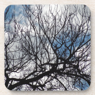 Treetops in the Clouds Drink Coaster