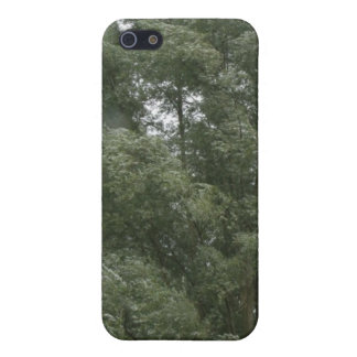Treetops iPhone 4 Case