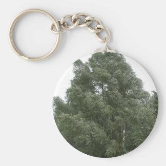 Treetops Keychain
